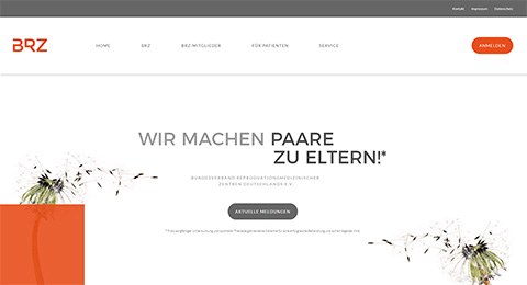 Screenshot Website BRZ
